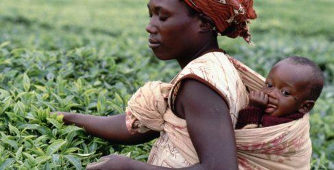 ПОЧЕМУ АФРИКАНСКИЕ ДЕТИ НЕ ПЛАЧУТ?